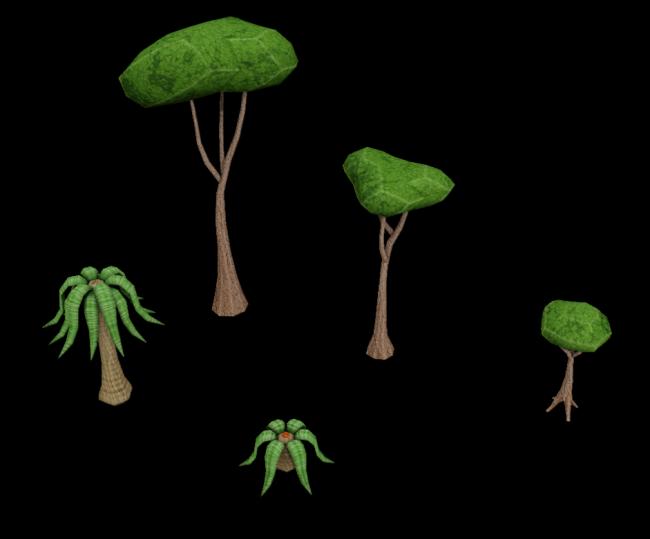 Tropical_Plants