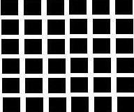 Hermann_grid1